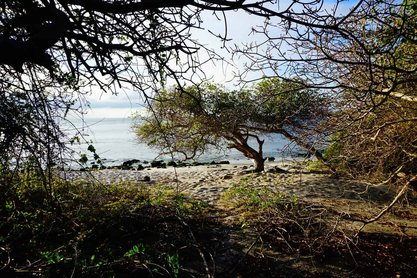 Da läuft man ein wenig über die Insel und dann führt einen der Wanderweg zu Menschenleeren Stränden